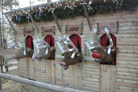 Center Parcs Sherwood Forest - Countdown to Christmas 09centerparcs-03