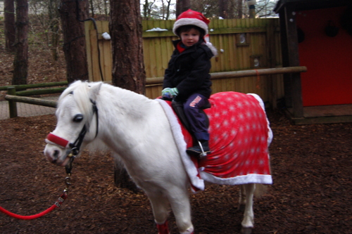 Center Parcs at Christmas time - pony ride from Santas workshop