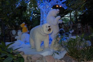 Center Parcs Longleat Forest at Christmas